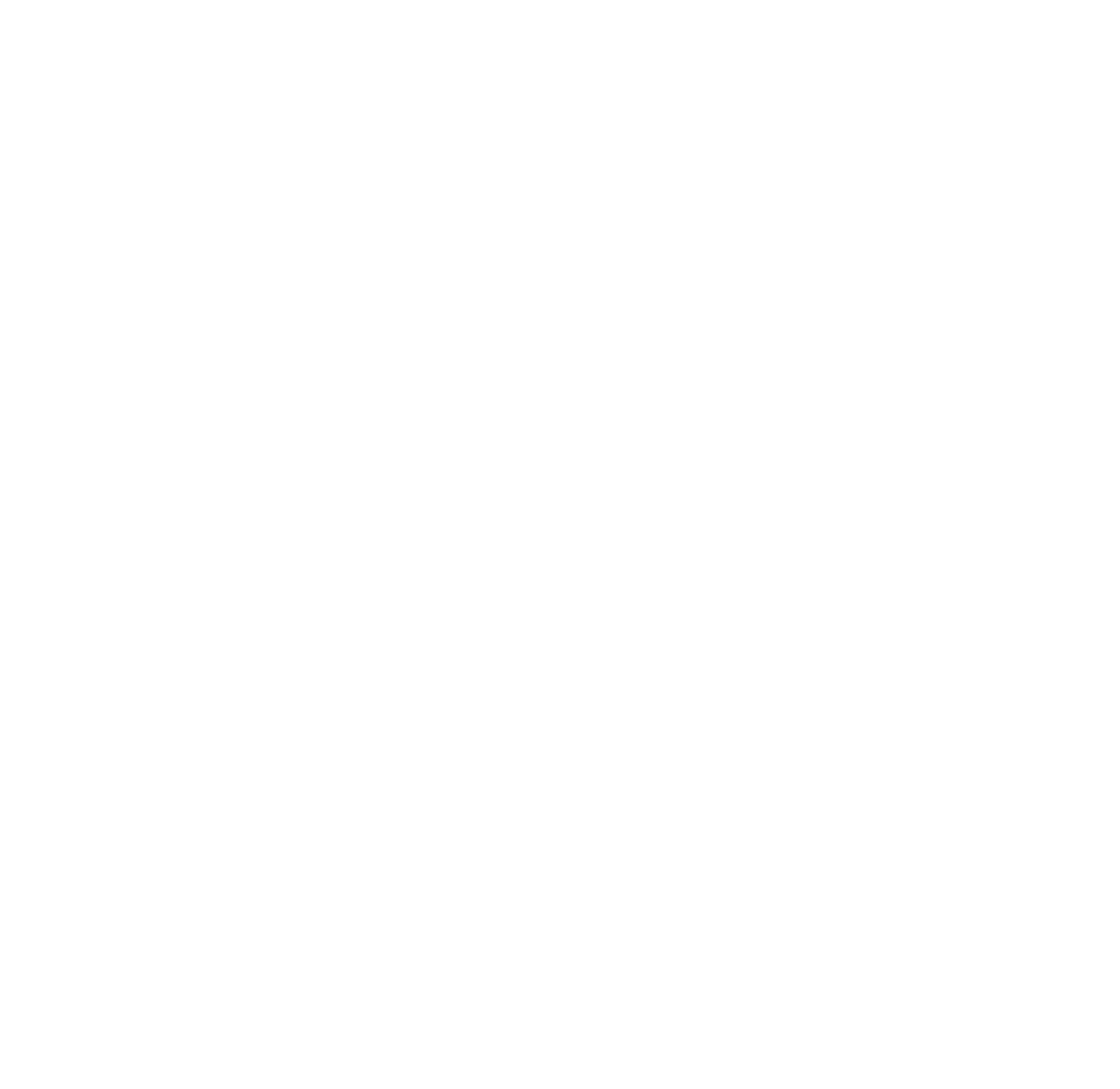 play_logo_white_rgb